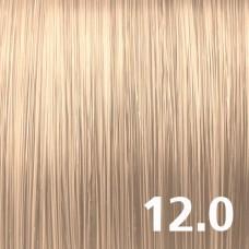 12.0 Натуральный супер-светлый блондин