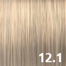 12.1 Супер-светлый блондин пепельный