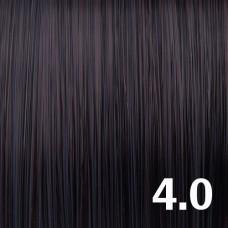 4.0 Натуральный средний коричневый брюнет