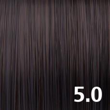 5.0 Натуральный светло-коричневый брюнет