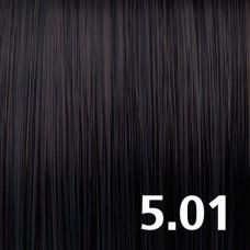5.01 Светлый брюнет пепельный