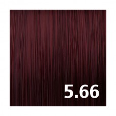 5.66 Бордовый