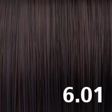 6.01 Темно-русый пепельный