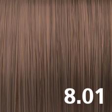 8.01 Светло-русый пепельный